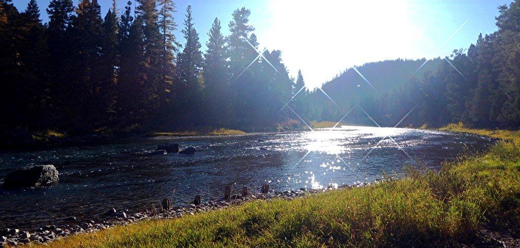 Blackfoot Angler