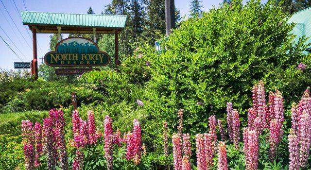 North Forty Resort — Whitefish, Montana